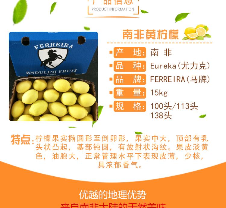进口水果批发南非马牌柠檬