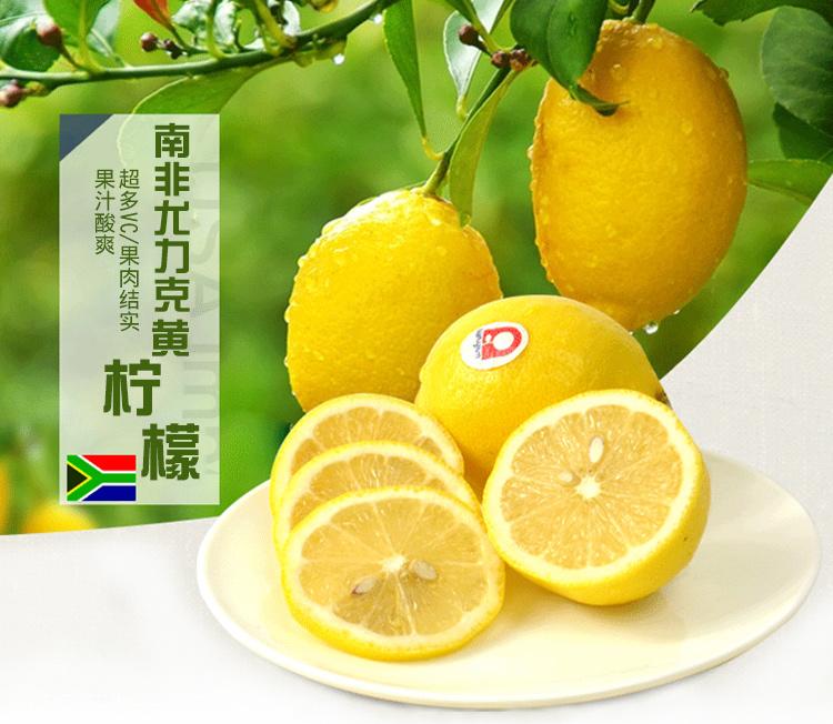 南非鑰匙扣檸檬
