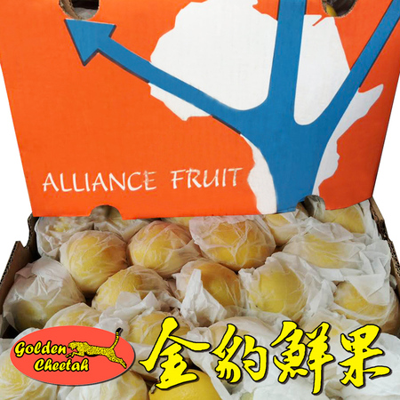南非Alliance Fruit黄柠檬Eureka