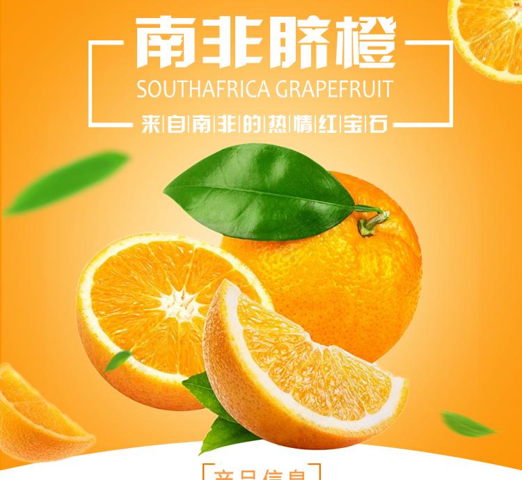 南非晚熟脐橙批发