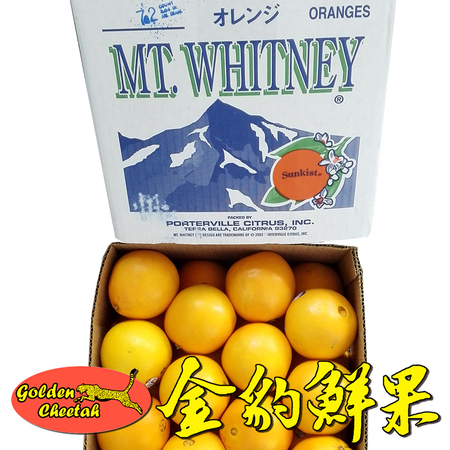 美国雪山牌MT Whiteney新橙Valencia