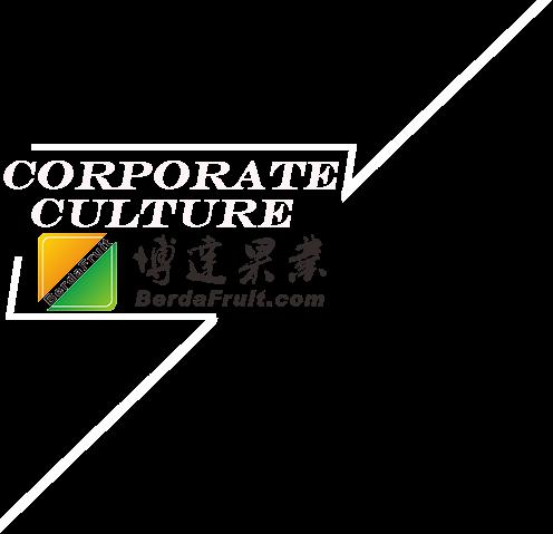 企業文化.png